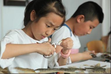 亲手制作鱼皮粘贴画 小学生走进高校感受非遗魅力